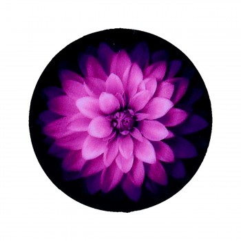 Držák PopSocket Purple Flower