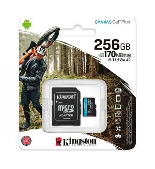 Paměťová karta Kingston 256 GB Class 10 Canvas Go Plus
